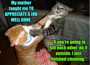 My mother taught me TO APPRECIATE A JOB WELL DONE.