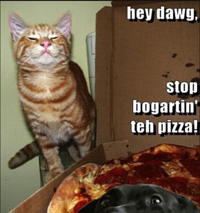 hey dawg, stop                                                  bogartin'                                                               teh pizza!