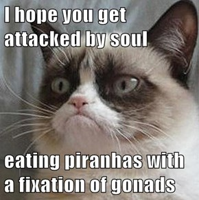 I hope you get attacked by soul  eating piranhas with a fixation of gonads