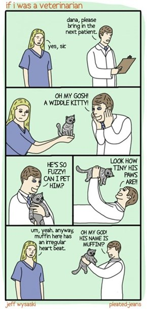 What Would Happen If I Ever Became a Veterinarian