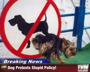 Breaking News - Dog Protests Stupid Policy!