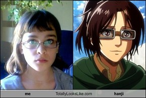 me Totally Looks Like hanji