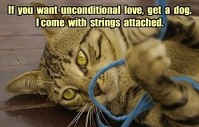 If  you  want  unconditional  love,  get  a  dog.  I come  with  strings  attached.