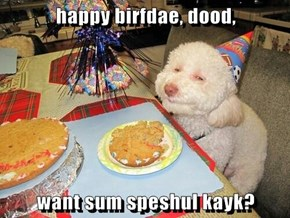 happy birfdae, dood,  want sum speshul kayk?