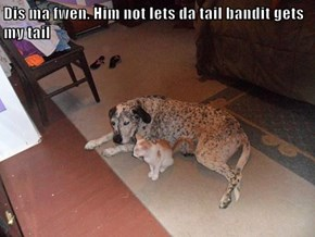 Dis ma fwen. Him not lets da tail bandit gets my tail