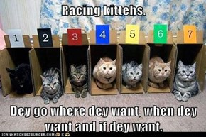Racing kittehs.  Dey go where dey want, when dey want and if dey want.