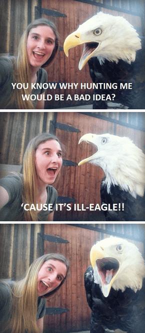 You Don't Wanna Be a Jailbird, Do Ya?