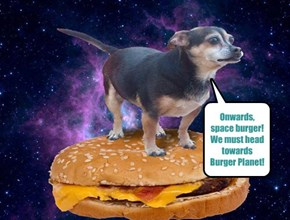 I Can Has Space Burger!