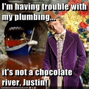 I'm having trouble with my plumbing...  it's not a chocolate river, Justin!