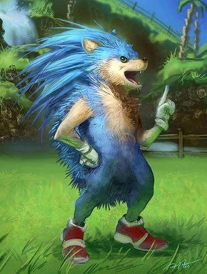 Sonic, Is That You?