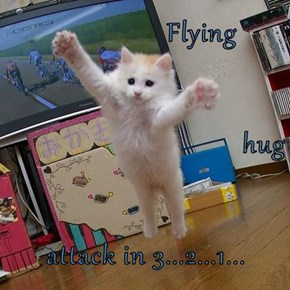 Flying hug attack in 3...2...1...