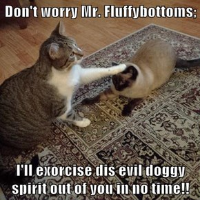 Don't worry Mr. Fluffybottoms;  I'll exorcise dis evil doggy spirit out of you in no time!!