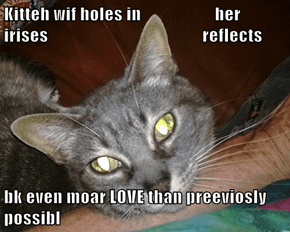 Kitteh wif holes in                     her irises                                            reflects  bk even moar LOVE than preeviosly possibl
