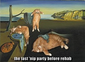 the last 'nip party before rehab
