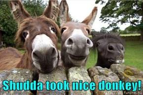 Shudda took nice donkey!