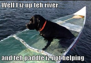 Well I iz up teh river  and teh paddle iz not helping