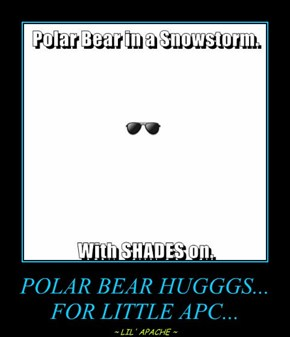 POLAR BEAR HUGGGS... FOR LITTLE APC...