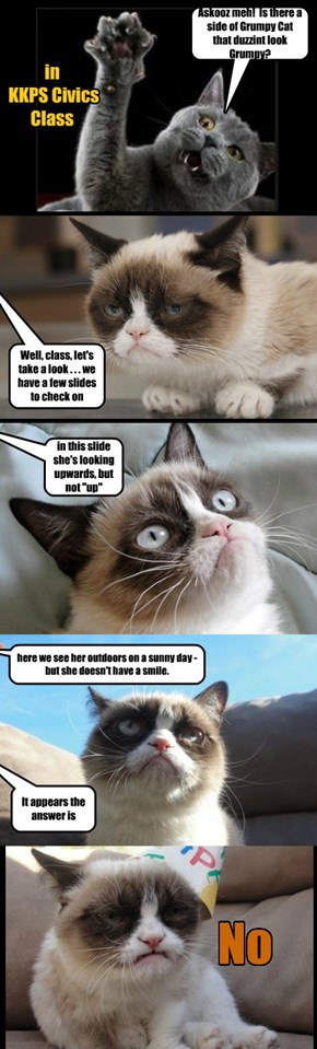 Is there a side of Grumpy Cat that duzzint look grumpy?