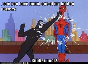 I see you have found one of my hidden powers:  Rubber neck!