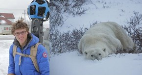 "Google ""Street View"" Maps Polar Bear Country"