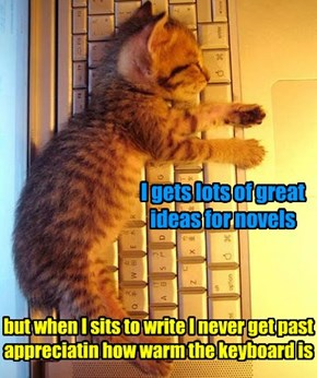 The reason that kitteh novelists are super rare