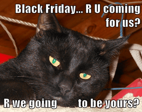 Black Friday... R U coming for us?  R we going         to be yours?