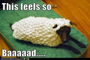 Don't Act so Sheepish...You Look Good!