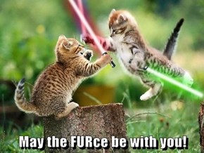 May the FURce be with you!