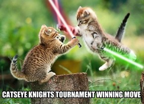 CATSEYE KNIGHTS TOURNAMENT WINNING MOVE