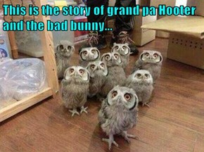 This is the story of grand pa Hooter and the bad bunny...