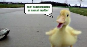 don't be riduckulous ur na mah mudder