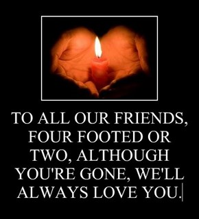 TO ALL OUR FRIENDS, FOUR FOOTED OR TWO, ALTHOUGH YOU'RE GONE, WE'LL ALWAYS LOVE YOU.
