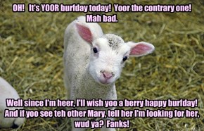 OH!   It's YOOR burfday today!  Yoor the contrary one!  Mah bad.