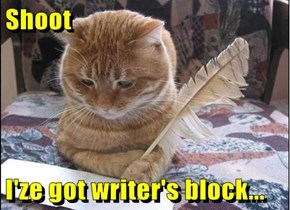 Shoot  I'ze got writer's block...