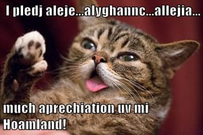 I pledj aleje...alyghannc...allejia...  much aprechiation uv mi Hoamland!