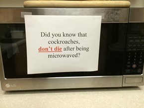 When No One Cleans the Office Microwave