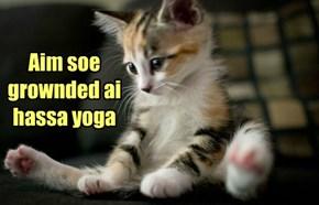 Aim soe grownded ai hassa yoga