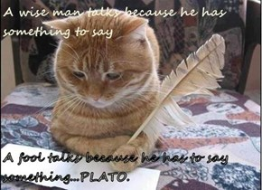 A fool talks because he has to say something...PLATO.