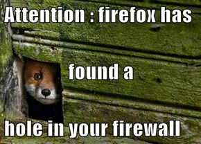 Attention : firefox has found a  hole in your firewall