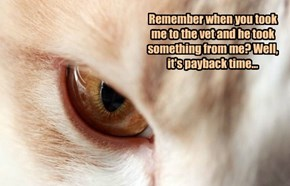 Remember when you took me to the vet and he took something from me? Well, it's payback time...
