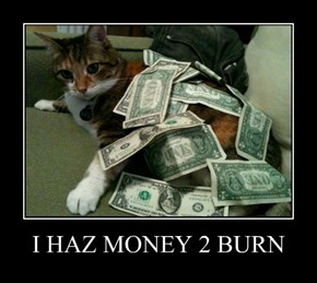 I HAZ MONEY 2 BURN