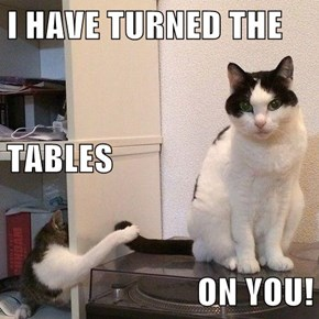 I HAVE TURNED THE TABLES ON YOU!