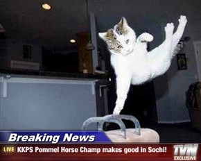 Breaking News - KKPS Pommel Horse Champ makes good in Sochi!
