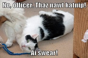 No, officer. Thaz nawt katnip!  Ai swear!