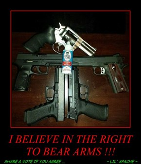 I BELIEVE IN THE RIGHT TO BEAR ARMS !!!