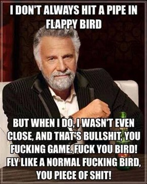 that damn bird