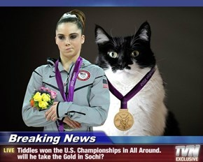 Breaking News - Tiddles won the U.S. Championships in All Around. will he take the Gold in Sochi?