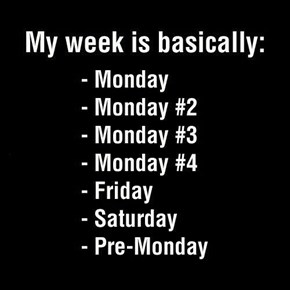 The Basic School Week