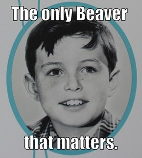 Just Leave It To Beaver