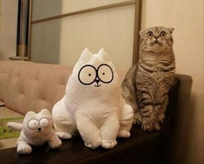Simon's Cat's Biggest Fan!